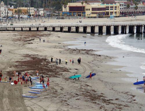 Santa Cruz council could tackle sales tax proposal, living wage